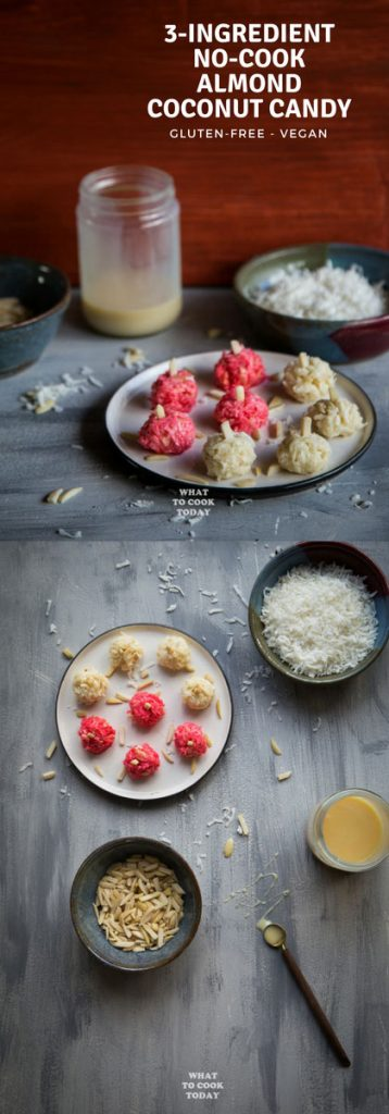 3-ingredient No-cook Almond Coconut Candy