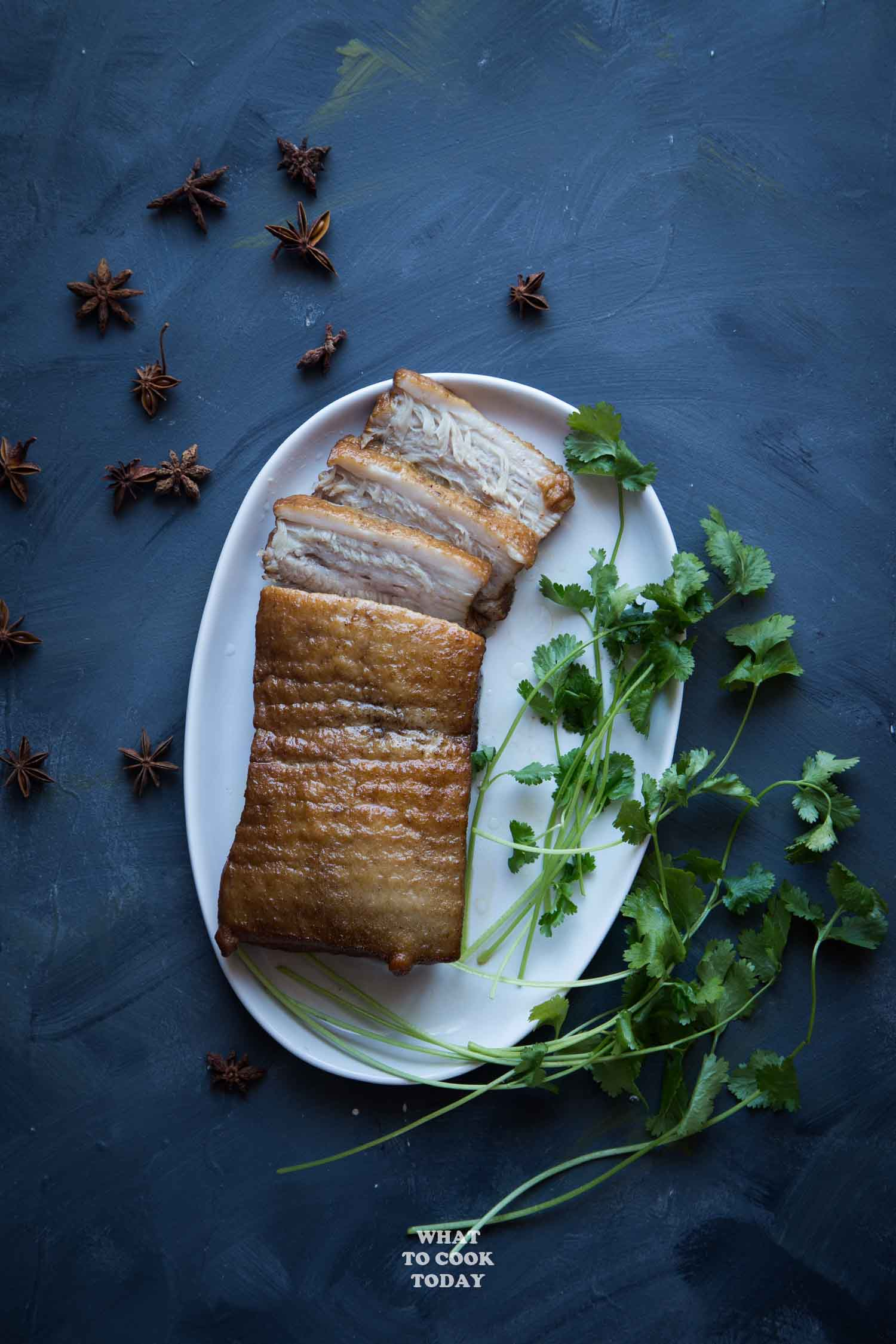 Pressure Cooker Kong Bak (Chinese Braised Pork Belly)