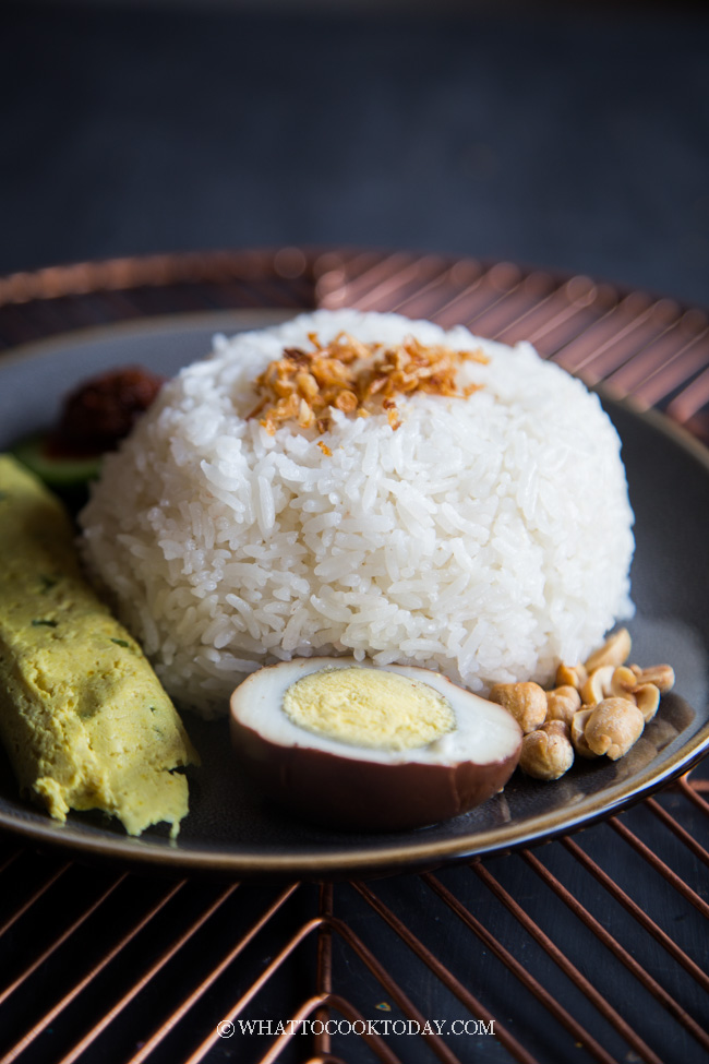 Rice Cooker or Instant Pot Nasi Gurih (in 3 Simple Steps)
