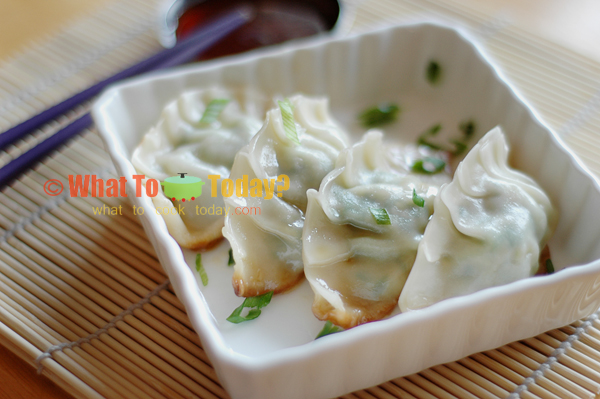 GYOZA/ JAPANESE PAN-FRIED DUMPLINGS | WHAT TO COOK TODAY?