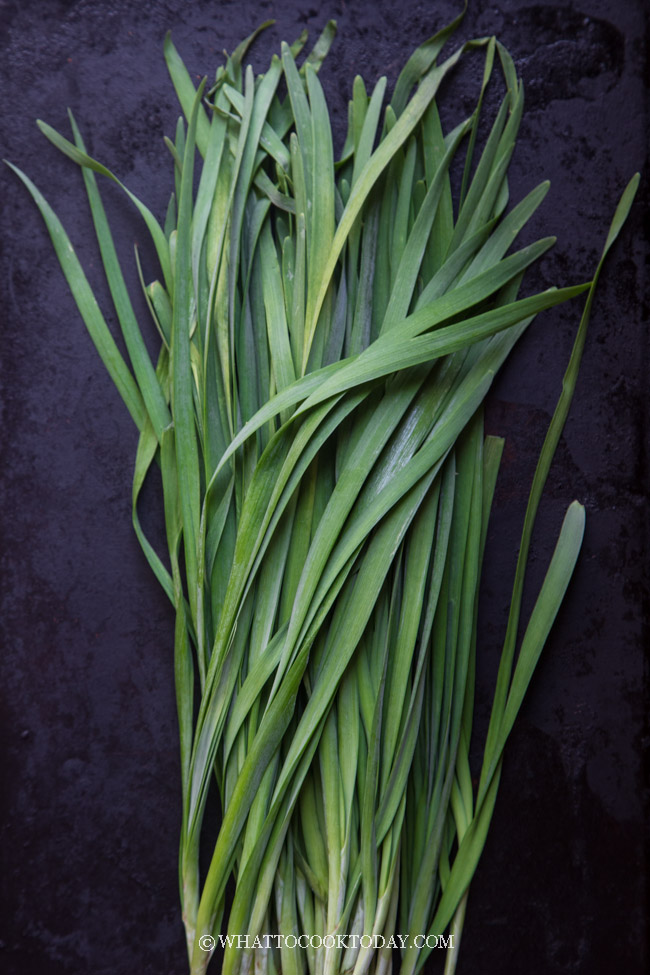 Garlic Chives / Chinese Chives