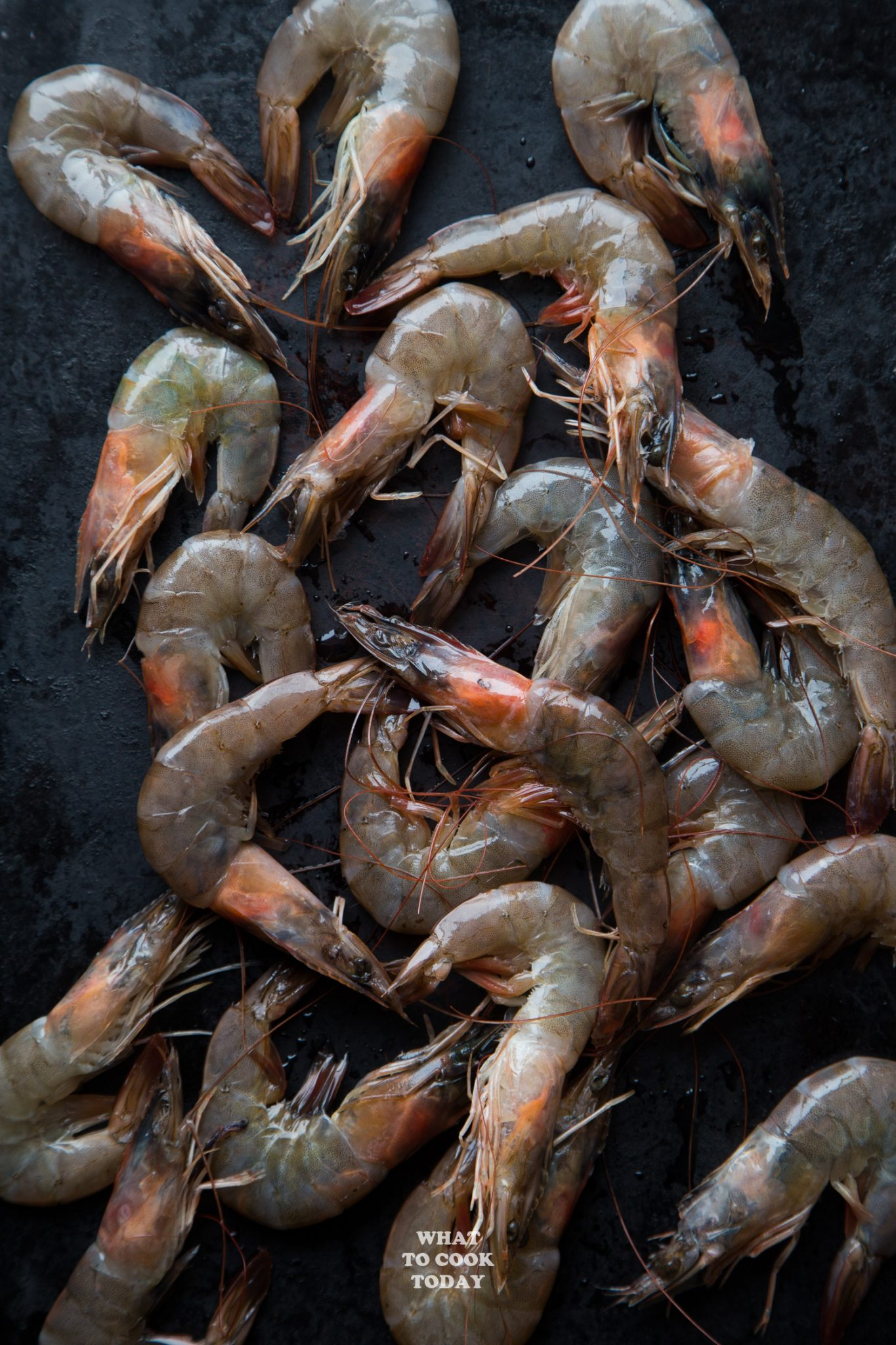 Large Shrimp with Shells and Head intact
