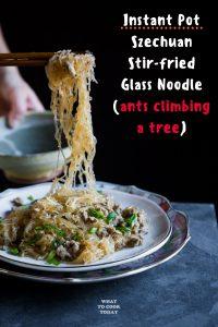 Ants Climbing a Tree - Glass Noodle Stir-fry (Ma Yi Shang Shu)
