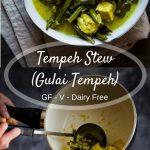 Gulai Tempeh (Tempeh Stew)