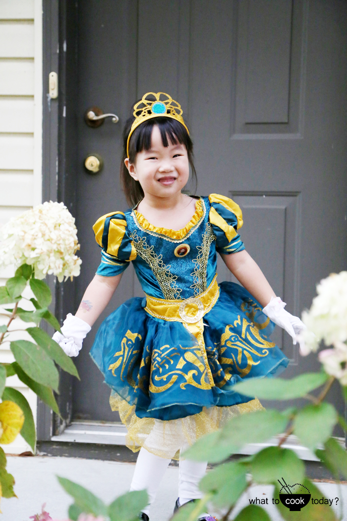 Brave dress up costume