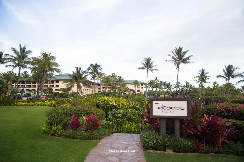 Grand Hyatt Kauai Tide Pool Restaurant