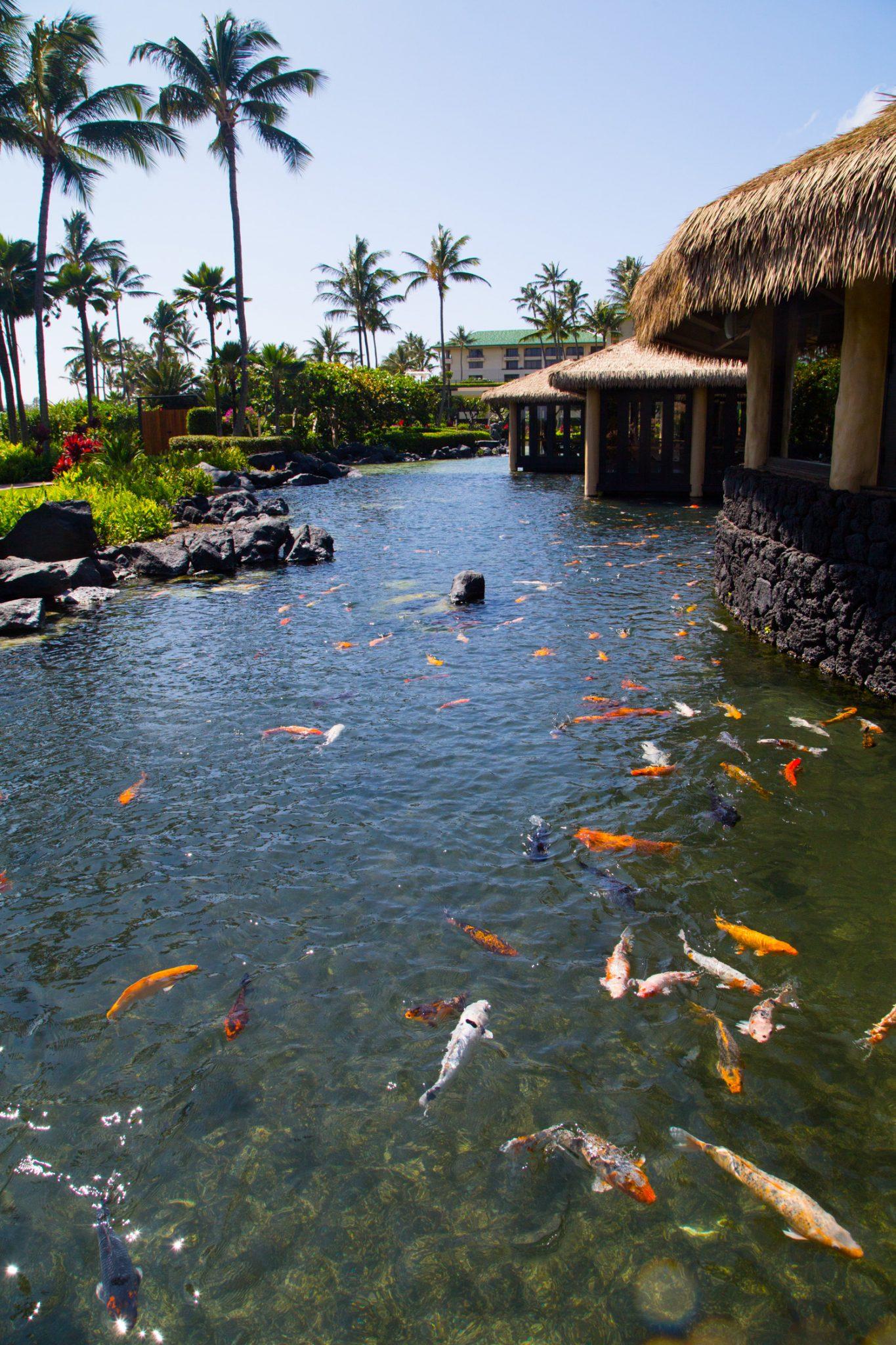 Grand Hyatt Kauai