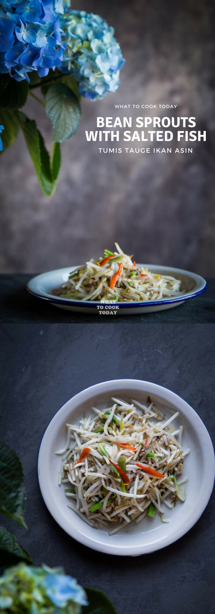Tumis tauge ikan asin/Stir-fried Bean Sprouts with Salted Fish. Crisp fresh bean sprouts (tauge) is sauteed with umami-rich salted fish is popular side dish in Southeast Asia. Perfect easy side dish.