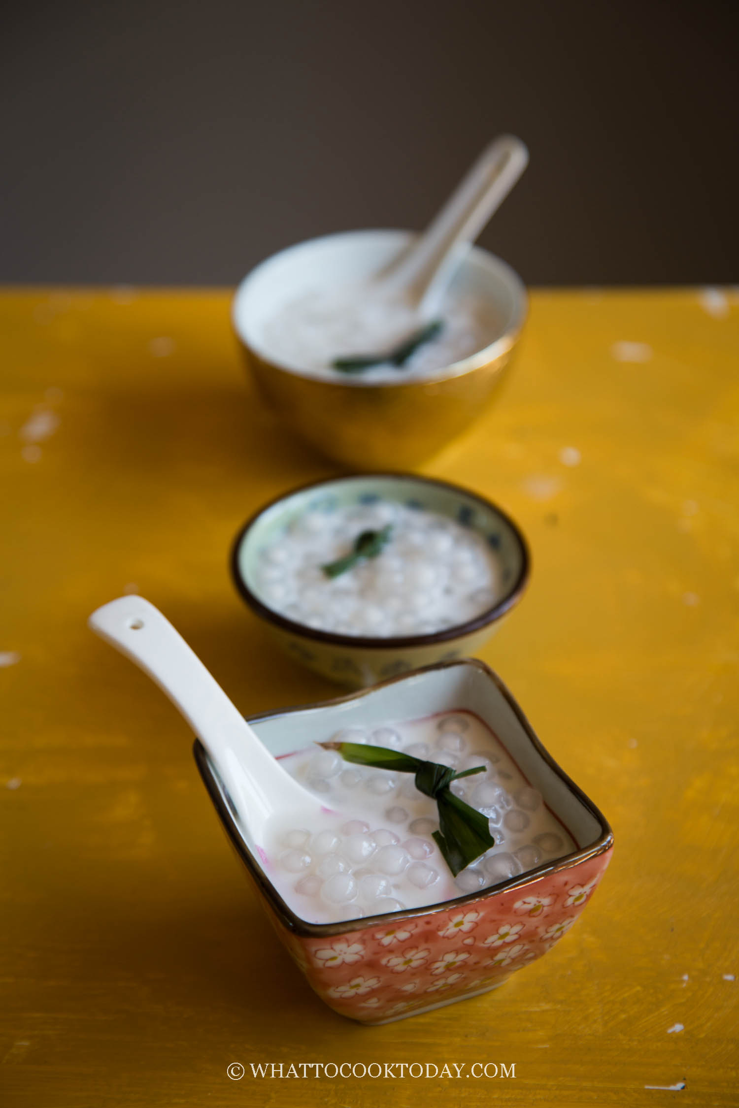 Easy Tapioca Pearls Coconut Milk Dessert
