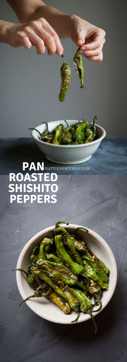 How To Pan Roast Japanese Shishito Peppers - These mild non-spicy shishito peppers are easy to roast and so great as a snack, appetizer, or side dish. So addictive to munch on #shishitopeppers