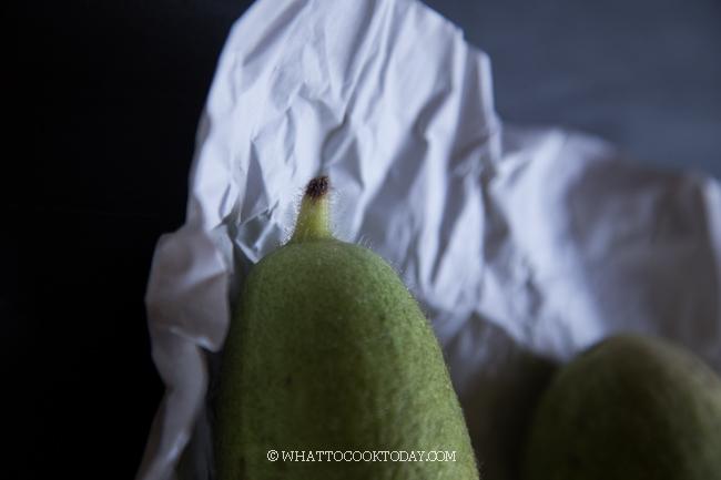 Fuzzy Melon (Hairy Gourd)