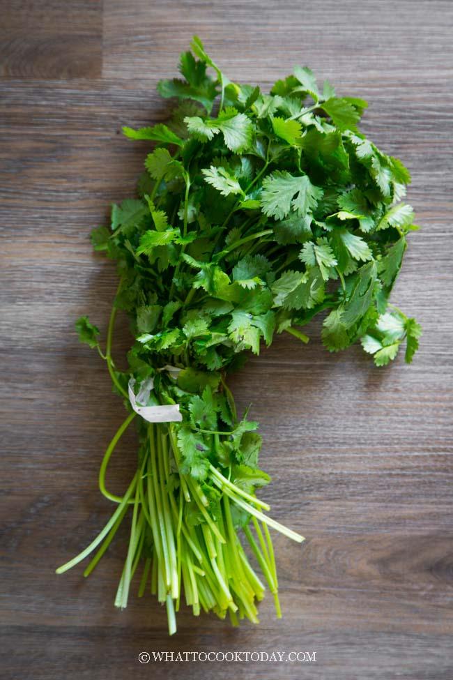 How To Keep Cilantro Fresh Longer In The Fridge